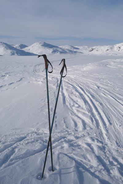 Nordic Skiing Expedition